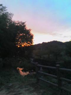 大安寺川の夕焼け